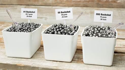 Home-Defense Buckshot: Choosing Size, Material & Velocity