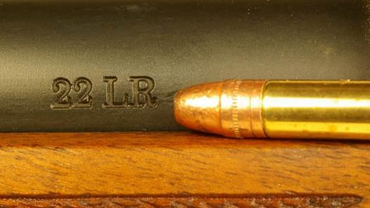 .22 LR rimfire